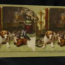 ORIGINAL STEREOVIEW ANTIQUE CARD ART: BOY LYING ON FLOOR WITH DOG, VINTAGE