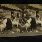 ORIGINAL STEREOVIEW ANTIQUE CARD ART: MILKING THE GOATS, HARDANGER FJORD, NORWAY