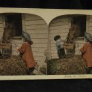 "ORIGINAL STEREOVIEW ANTIQUE CARD ART: ""DOING THE CHORES"" KIDS FEEDING HORSE"