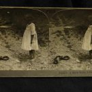 ORIGINAL STEREOVIEW ANTIQUE CARD ART: GIRL WITH SNAKE, 6FT LONG, PHOTOGRAPH