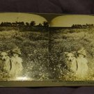 """ORIGINAL STEREOVIEW ANTIQUE PHOTO: """"HER FAITHFUL GUARDIAN"""" DOG WITH GIRL 1903"""