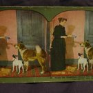 ORIGINAL STEREOVIEW ANTIQUE PHOTO: READY FOR BREAKFAST- PET DOGS 1898 FEEDING