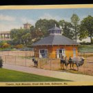 ANTIQUE ORIGINAL POSTCARD: CAMELS, PARK MANSION, BALTIMORE, MD, DRUID HILL PARK