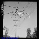 *NEW* Antique Bicycle Photo:(8X10) Full Bike Sign, Sales, Service, Suspended