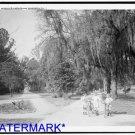 *NEW* Antique Bicycle Photo:(8X10) Riverside Park, Children, Jacksonville, FL