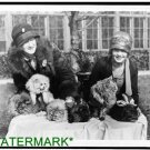 Antique-RP-Cat Photo:(8X10) Washington D.C. Cat Show, Wardman Park Hotel, Women
