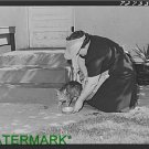 Antique-RP-Cat Photo:(8X10) Housewife feeds cat, Turlock, California, Pet Cat