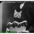 Antique-rp-Cat Photo:(8X10) Paris-London Moissant's Cat 1915, Cat in Basket