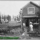 Antique Cat Photo:(8.5x11) Mrs. Brandt's Home, Fairbanks, Alaska,  Garden, 2 cat