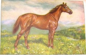 1923 THOROUGHBRED: MAN-OF-WAR PRINT by E H MINER Pl-19