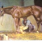 1923 STANDARD BRED HORSE PRINT by EDWARD H MINER Pl-20