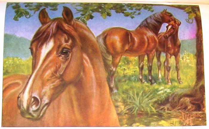 1923 MORGAN HORSE PRINT by EDWARD H MINER Plate-21