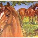 1923 MORGAN HORSE PRINT by EDWARD H MINER Plate-21