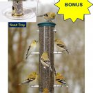 *BONUS* Aspects Medium Spruce Quick-Clean Nyjer Tube Finch Feeder with Seed Tray