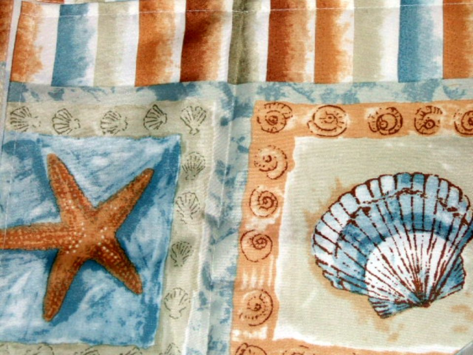 Brighton Seashells And Starfish Shower Curtain Beach Decor