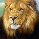 "Lion the wild King 20"" x 24"" Original Oil"