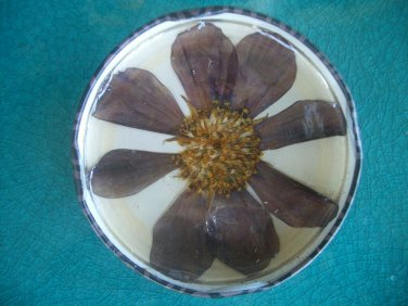 CLOSEOUT Pressed Flower Pins