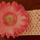 Headband with Gerber Daisy- Handmade