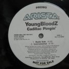 "YOUNGBLOODZ usa 12"" CADILLAC PIMPIN' Dj WHITE JACKET ARISTA"