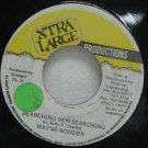 """WAYNE WONDER jamaica 45 SEARCHING DEM SEARCHING 7"""" Reggae XTRA-LARGE"""