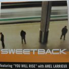 """SWEETBACK usa display YOU WILL RISE 12"""" X 12"""" DOUBLE-SIDED POSTER. THIS IS NOT A"""