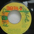 "SHABBA RANKIN & LESLIE THUNDER jamaica 45 WHAT CAN YOU DO 7"" Reggae DIGITAL-B"