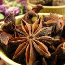 Echinacea Purpurea Root, Powder - 1 Lb