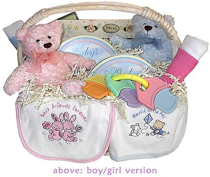 Welcome Twins Baby Gift Basket