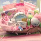 Precious Baby New Baby Carrier Gift Basket