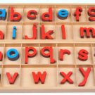Montessori Large Wood Movable Alphabet, Print (5mm thick)