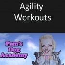 Agility Workouts