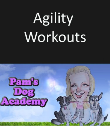 Agility Workouts
