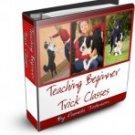 Teaching Beginner Trick Classes