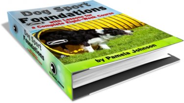 Dog Sports Foundations with Lessons