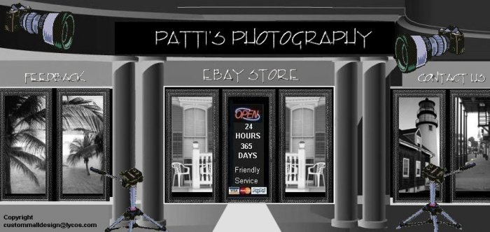 Web Site or Auction Template Camera Supplies Mall Header Logo With Custom Links