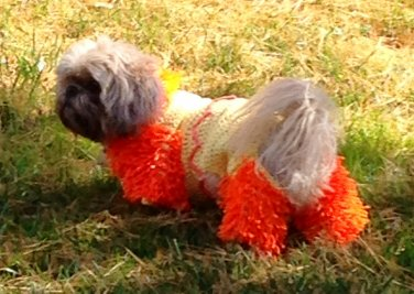 PATTERN - Lion Halloween Costume for Dogs