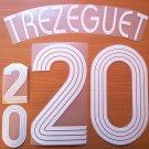 TREZEGUET 20 FRANCE HOME WORLD CUP 2006 NAME NUMBER SET NAMESET KIT PRINT