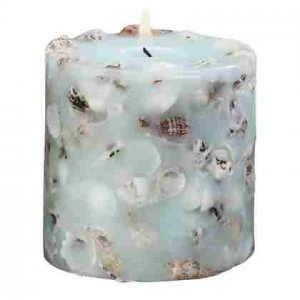 Scented Candle - Assorted Shells