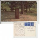 Hampshire   Postcard Rufus Stone New Forest. Mauritron #170