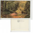 Hampshire   Postcard A New Forest Stream. Mauritron #172