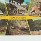 New Forest Multi View Postcard. Mauritron PC495-213890
