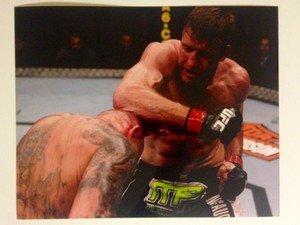 UFC MMA STEPHAN BONNAR punches K-Sos 8x10 photo