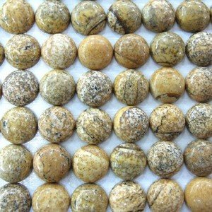 Certified Lot of 25 Pieces AAA Quality Picture jasper 15 m.m. Round Cabochon