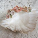 Decorative Collectible Seashell Shell Dish