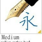 Pilot Fountain Pen Custom 845 Medium Nib Fkv5mrbm