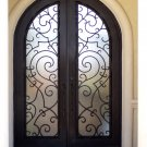 French Architectural Style---DAD 024 Wrought Iron Doors