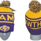Prairie View A&M University BALL BEANIE CAP HBCU SKI CAP SKULL CAP BEANIE