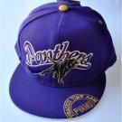 Prairie View A&M University Snapback Baseball Cap Hat One size fits PANTHERS