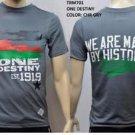 Gray short sleeve T-shirt  Black History ONE DESTINY Short sleeve T-shirt M-3X