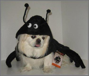BeGood Spidey Paws Costume